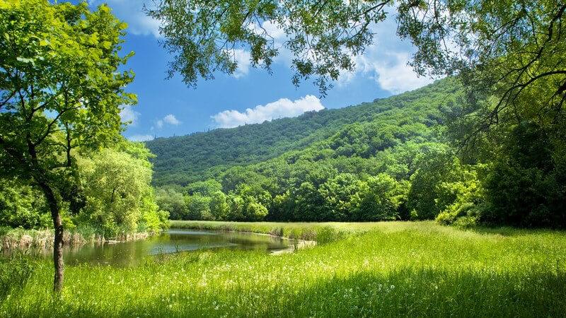 Sommerlandschaft mit Fluss und blauem Himmel