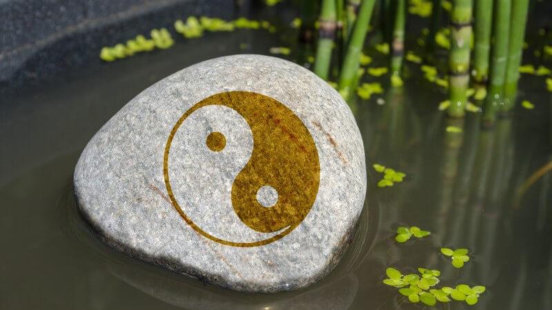 Stein mit Yin-Yang-Zeichen im Wasser neben Wasserlinsen und Schachtelhalm