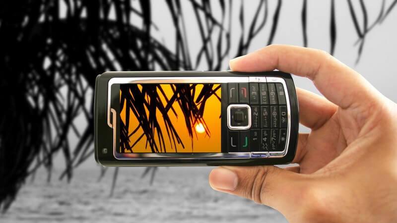 Foto von Palme und Sonnenuntergang wird mit Handy gemacht, schwarz-weißer Hintergrund