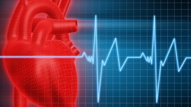 Grafik Herz mit EKG vom Herzschlag Puls