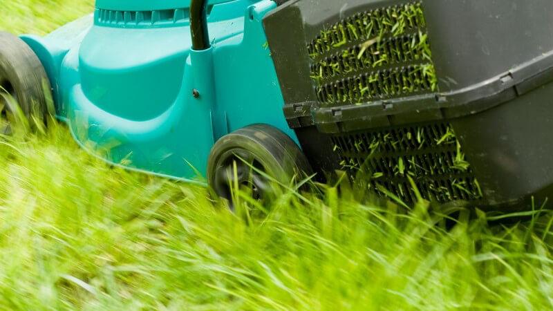 Elektrischer türkiser Rasenmäher im Einsatz im Garten