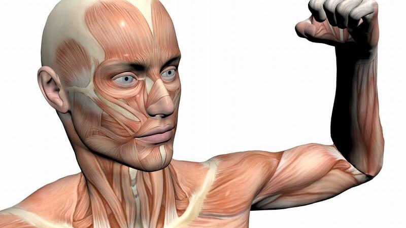 Grafik junger Mann zeigt seine Armmuskeln