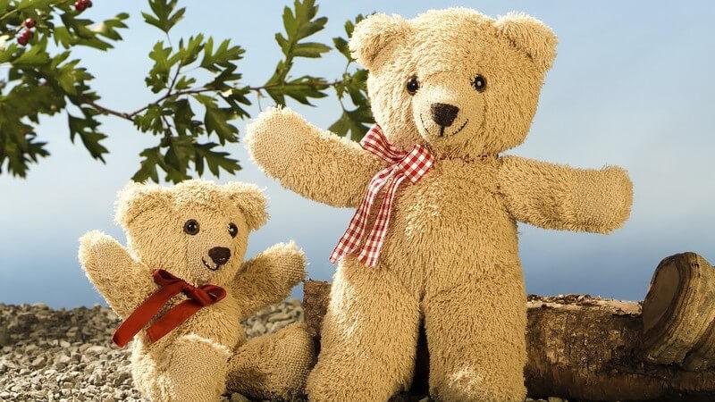 Zwei Teddybären