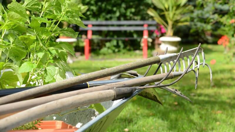 Geräte für Gartenarbeit wie Harke und Rechen in Schubkarre