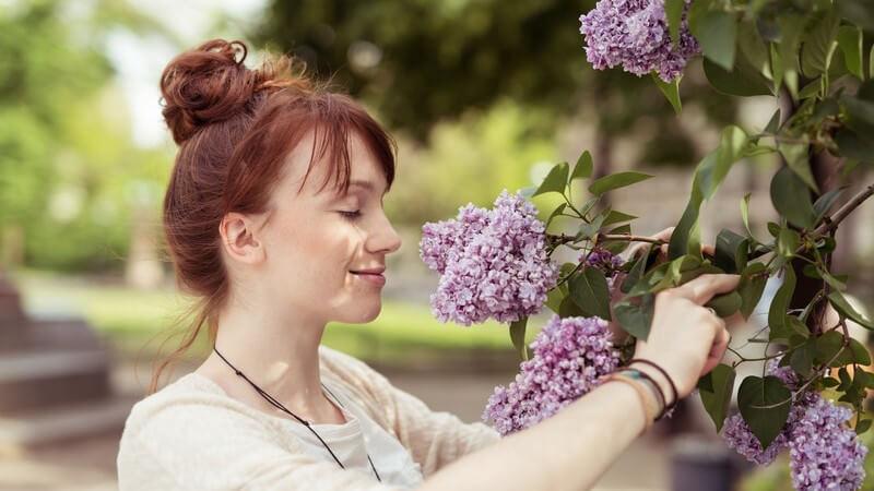 Junge Frau mit Hochsteckfrisur riecht am Flieder in einem Park