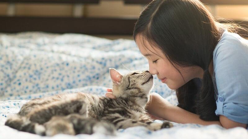 Asiatisches Mädchen kuschelt mit einer Katze auf einer Decke