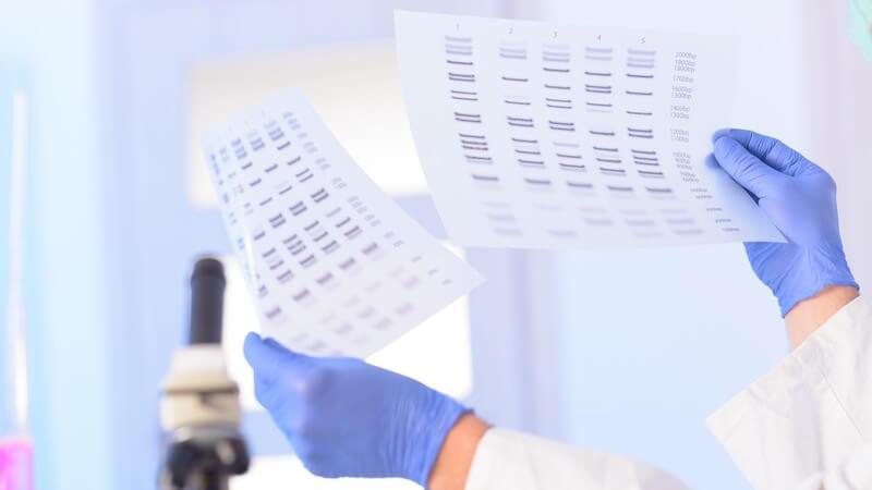 Forscher mit blauen Handschuhen hält in einem Labor zwei Zettel mit DNA-Mustern hoch