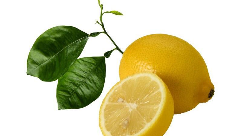 Eineinhalb frische Zitronen mit zwei grünen Blättern auf weißem Hintergrund