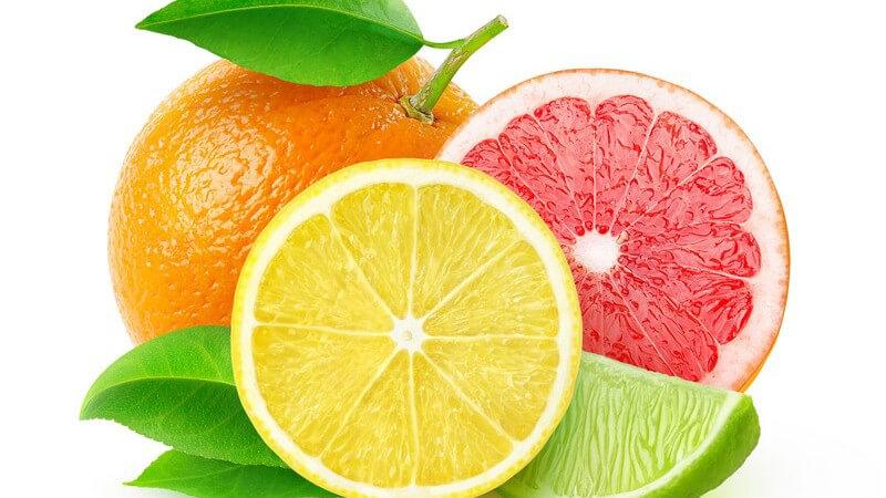 Zitrusfrüchte vor weißem Hintergrund - Orange, Zitrone, Limette und Grapefruit