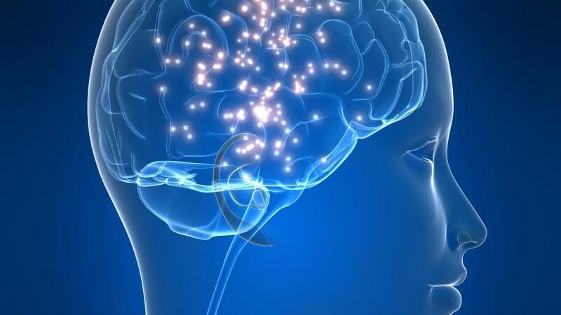Grafik menschlicher Kopf mit Gehirn, Migräne