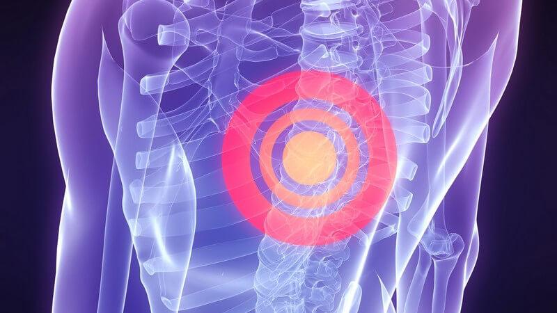 3D Ansicht menschlicher Körper, Wirbelsäule mit rotem Kreis markiert