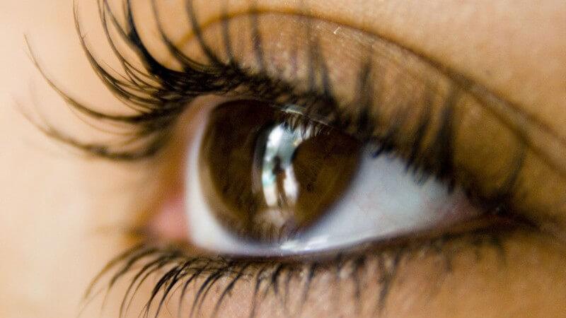 Nahaufnahme linkes braunes Auge einer Frau