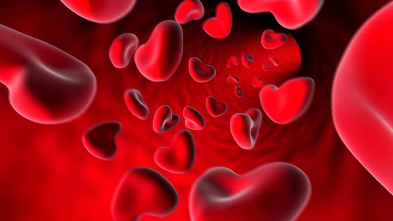 Grafik Blutzellen in Herzform in Ader