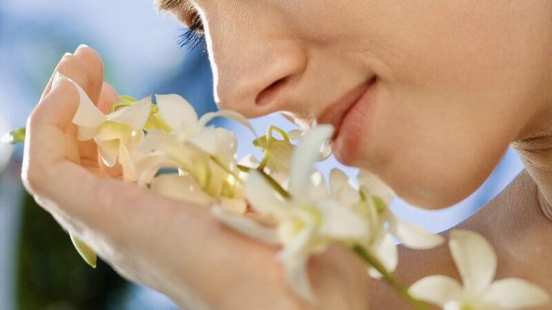 Frau hält Orchidee ans Gesicht und riecht daran