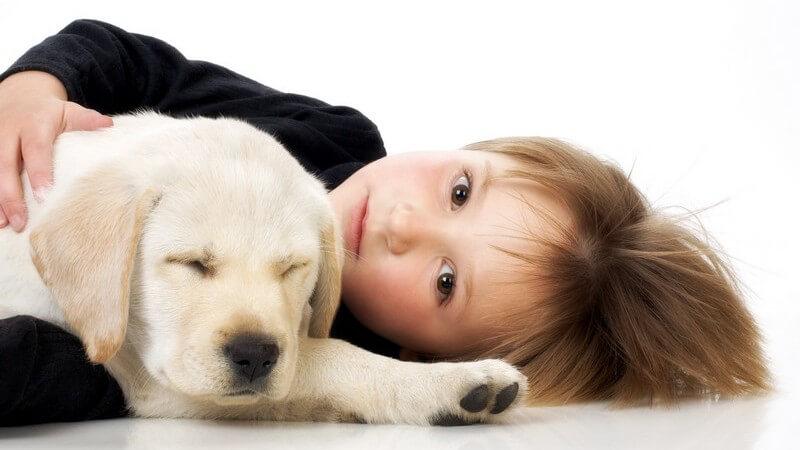Kleines Mädchen liegt imt Labrador Welpe auf dem Boden, weißer Hintergrund