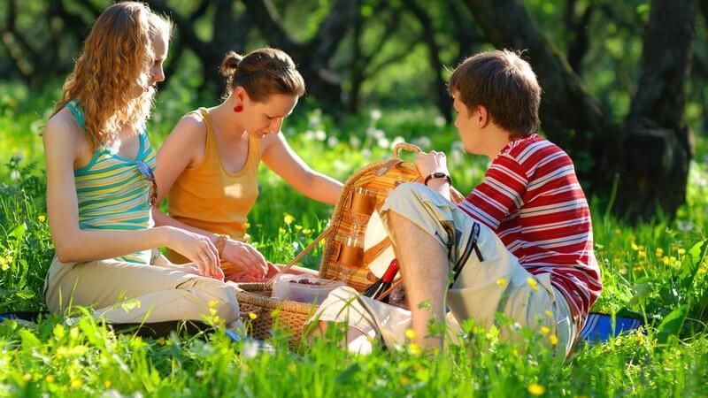 2 Mädchen und ein Junge auf einer Wiese beim Picknick vor einem Wald mit Picknickkorb