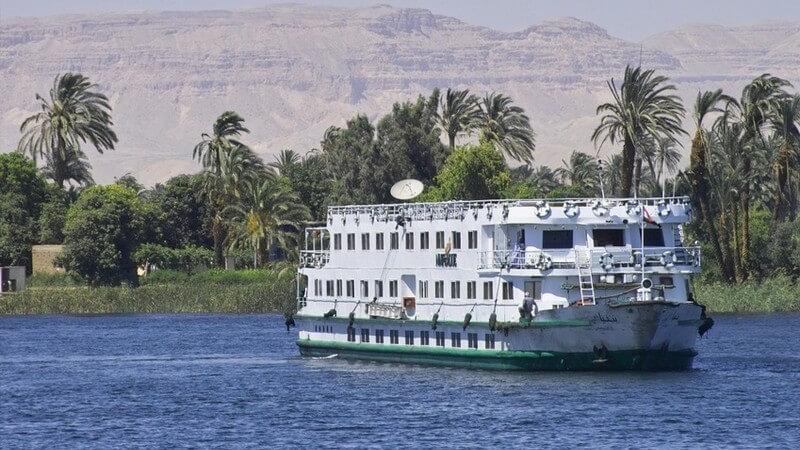 Weiß-Grünes Kreuzfahrtschiff auf blauem Wasser vor grünen Palmen