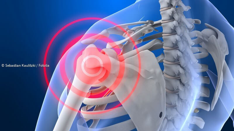 ᐅ Die menschliche Schulter - extrem kräftig und