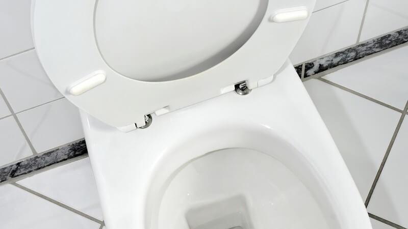 Ansicht von oben: Toilettenschüssel mit hochgeklapptem Sitz und Deckel