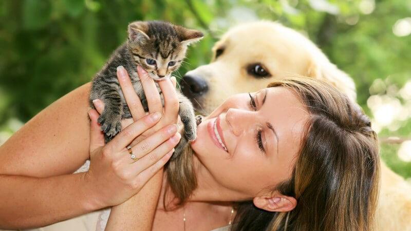 Junge Frau hält Katzenbaby in den Händen, hinter ihr Labradorwelpe