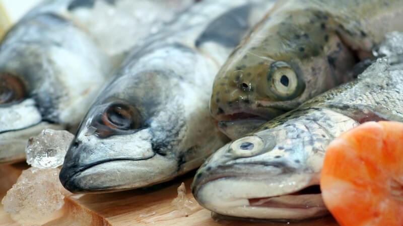 Frischer Fisch und Eis auf einem Holzbrettchen