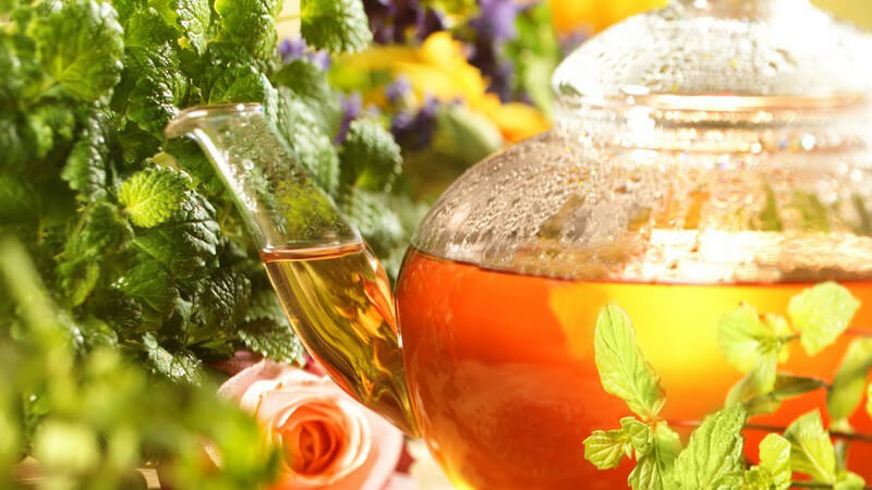 Tee in Kanne umgeben von frischen Kräutern